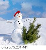 Снеговик в новогоднем колпаке и еловые ветки на снегу. Стоковое фото, фотограф ElenArt / Фотобанк Лори