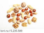 Купить «Смесь из разных орехов на белом фоне», эксклюзивное фото № 5235589, снято 29 октября 2013 г. (c) Яна Королёва / Фотобанк Лори