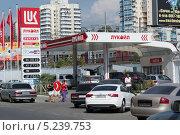 Купить «Автозаправка в Сочи», фото № 5239753, снято 7 сентября 2012 г. (c) Михаил Иванов / Фотобанк Лори