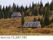 Купить «Кордон Хальсория на реке Вишера», фото № 5247741, снято 17 сентября 2009 г. (c) Денис Нечаев / Фотобанк Лори
