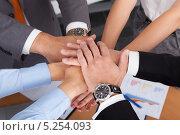Купить «участники бизнес-команды сложили руки вместе», фото № 5254093, снято 25 августа 2013 г. (c) Андрей Попов / Фотобанк Лори