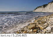 Купить «Каменистый берег, дикий пляж», эксклюзивное фото № 5254465, снято 25 сентября 2011 г. (c) Dmitry29 / Фотобанк Лори