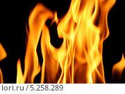 Купить «Огонь на черном фоне», фото № 5258289, снято 16 июля 2008 г. (c) Иван Михайлов / Фотобанк Лори