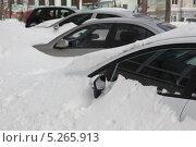 Снег засыпал автостоянку. Стоковое фото, фотограф Александров Алексей / Фотобанк Лори