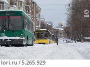 Троллейбусы в снежном заносе (2013 год). Редакционное фото, фотограф Александров Алексей / Фотобанк Лори