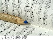 Нотный карандаш (2013 год). Редакционное фото, фотограф Вячеслав Сапрыкин / Фотобанк Лори