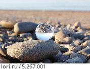 Стеклянный шар на камнях на берегу моря. Стоковое фото, фотограф Александра Полупанова / Фотобанк Лори