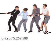 Купить «мужчины и женщины в деловой одежде тянут канат», фото № 5269589, снято 25 августа 2013 г. (c) Андрей Попов / Фотобанк Лори