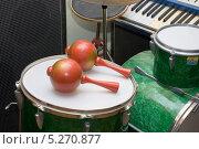 Купить «Музыкальные инструменты», эксклюзивное фото № 5270877, снято 25 сентября 2012 г. (c) Александр Щепин / Фотобанк Лори