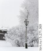 Зимний пейзаж с фонарём. Стоковое фото, фотограф Людмила Жмурина / Фотобанк Лори
