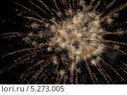 """Купить «""""пушистый"""" фейерверк на темном небе», фото № 5273005, снято 13 октября 2012 г. (c) Иван Бондаренко / Фотобанк Лори"""