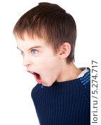 Купить «Мальчик кричит», фото № 5274717, снято 7 ноября 2013 г. (c) Дмитрий Наумов / Фотобанк Лори
