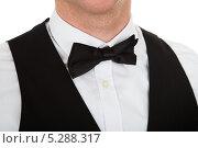 Купить «официант в жилете и бабочке, крупный план», фото № 5288317, снято 22 июня 2013 г. (c) Андрей Попов / Фотобанк Лори