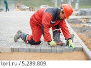 Купить «Рабочий укладывает тротуарную плитку», фото № 5289809, снято 12 октября 2013 г. (c) Дмитрий Калиновский / Фотобанк Лори