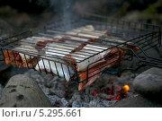 Красная рыба на углях. Стоковое фото, фотограф Vladimir 'Seagull' Maksimov / Фотобанк Лори