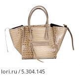 Купить «Модная женская сумка на белом фоне», фото № 5304145, снято 29 октября 2013 г. (c) Egorius / Фотобанк Лори