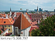 Крыши Старого города.Таллин. (2012 год). Стоковое фото, фотограф Алла Вовнянко / Фотобанк Лори