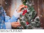 Наряженная ёлка. Стоковое фото, фотограф Артём Ласьков / Фотобанк Лори