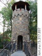 Купить «Башня в Старом парке», фото № 5317897, снято 17 августа 2010 г. (c) Татьяна Дигурян / Фотобанк Лори