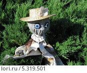 Пугало огородное в соломенной шляпе с цветком. Крупный план (2011 год). Редакционное фото, фотограф Гордюшина Олеся / Фотобанк Лори