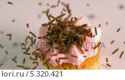 Купить «Chocolate sprinkles falling onto pink frosted cupcake», видеоролик № 5320421, снято 27 июня 2019 г. (c) Wavebreak Media / Фотобанк Лори