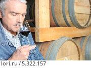 Купить «Пожилой дегустатор в подвале винокурни», фото № 5322157, снято 14 апреля 2010 г. (c) Phovoir Images / Фотобанк Лори