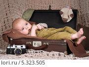 Купить «Малыш (3,5 мес) лежит в ретро-чемодане», фото № 5323505, снято 22 ноября 2013 г. (c) Охотникова Екатерина *Фототуристы* / Фотобанк Лори