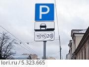 Купить «Дорожный знак платной парковки», фото № 5323665, снято 30 ноября 2013 г. (c) Victoria Demidova / Фотобанк Лори