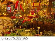 Купить «Остров Мадейра. Новогодняя ярмарка тропических цветов на вечерних улицах Фуншала», фото № 5328565, снято 22 декабря 2011 г. (c) Виктория Катьянова / Фотобанк Лори
