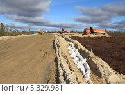 Строительство автомобильной дороги на месторождение в Западной Сибири (2012 год). Редакционное фото, фотограф Валерий Акулич / Фотобанк Лори