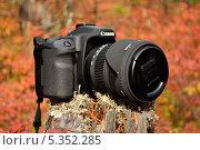 Canon осенью (2011 год). Редакционное фото, фотограф Алексей Леонтьев / Фотобанк Лори