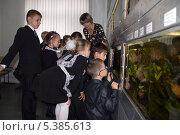 Дети с педагогом, экскурсоводом в аквацентре (2013 год). Редакционное фото, фотограф Ольга Логачева / Фотобанк Лори