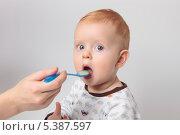 Голодного маленького мальчика кормят с ложечки, на сером фоне. Стоковое фото, фотограф Александр Орлов / Фотобанк Лори
