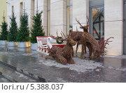 Купить «Новогоднее оформление на улице Москвы. Олени, запряженные в сани», эксклюзивное фото № 5388037, снято 13 декабря 2013 г. (c) Елена Коромыслова / Фотобанк Лори