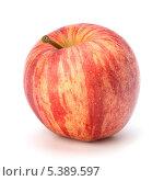 Купить «Одно красное яблоко», фото № 5389597, снято 22 февраля 2011 г. (c) Natalja Stotika / Фотобанк Лори