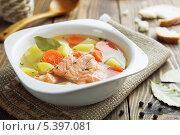 Купить «Рыбный суп», фото № 5397081, снято 16 декабря 2013 г. (c) Надежда Мишкова / Фотобанк Лори