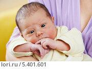 Купить «Новорожденный малыш скосил глаза», фото № 5401601, снято 15 декабря 2013 г. (c) Дмитрий Калиновский / Фотобанк Лори