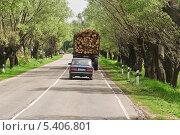 Купить «Лесовоз с брёвнами на дороге», эксклюзивное фото № 5406801, снято 24 мая 2013 г. (c) Алёшина Оксана / Фотобанк Лори