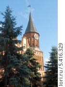 Купить «Калининград-Кёнигсберг. Кафедральный собор», эксклюзивное фото № 5416329, снято 30 октября 2013 г. (c) Svet / Фотобанк Лори