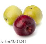 Купить «Два зеленых и одно красное яблоко на белом фоне», фото № 5421081, снято 4 июля 2011 г. (c) Natalja Stotika / Фотобанк Лори