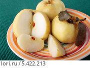 Купить «Моченые яблоки на тарелке», фото № 5422213, снято 22 декабря 2013 г. (c) Наталья Евстигнеева / Фотобанк Лори