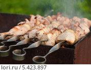 Купить «Мясо готовится на мангале», эксклюзивное фото № 5423897, снято 8 июня 2013 г. (c) Игорь Низов / Фотобанк Лори