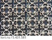 Декоративная кованая решетка. Стоковое фото, фотограф Kate Chizhikova / Фотобанк Лори