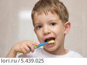 Мальчик чистит зубы. Стоковое фото, фотограф Svitlana Aryeva / Фотобанк Лори