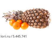 Купить «Ананас и мандарины на белом фоне», фото № 5445741, снято 1 января 2014 г. (c) Литвяк Игорь / Фотобанк Лори