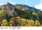 Купить «Орлиные скалы, Сочи», фото № 5447801, снято 26 октября 2013 г. (c) Анна Мартынова / Фотобанк Лори