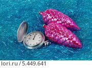 Купить «Скоро Новый год», эксклюзивное фото № 5449641, снято 2 января 2014 г. (c) Елена Коромыслова / Фотобанк Лори