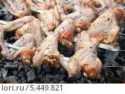 Купить «Приготовление шашлыка из куриных крылышек», эксклюзивное фото № 5449821, снято 6 июля 2013 г. (c) Щеголева Ольга / Фотобанк Лори