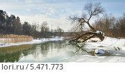 Купить «Март», эксклюзивное фото № 5471773, снято 14 марта 2009 г. (c) Владимир Чинин / Фотобанк Лори