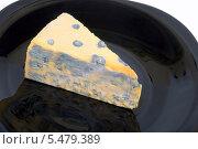 Купить «Мягкий сыр с благородной плесенью», эксклюзивное фото № 5479389, снято 13 января 2014 г. (c) Александр Щепин / Фотобанк Лори